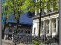 Amsterdam_bikes_001