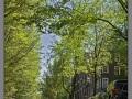 Amsterdam_canal_003
