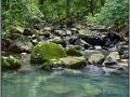 Costa Rica, Cocos Island, way to the waterfall