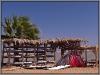 Egypt, Danab, Laguna, windsurf station