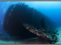 Egypt, Northern Red sea, Carnatic wreck