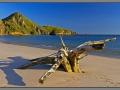 Indonesia, Padar island - pink beach