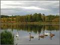 Pskov Region, Izborsk (2009)