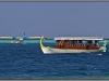 Maldives, Indian Ocean, dhoni