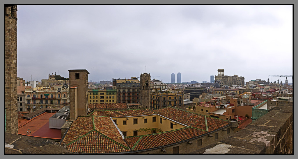 Barcelona, Catedral de Barcelona, view from the top