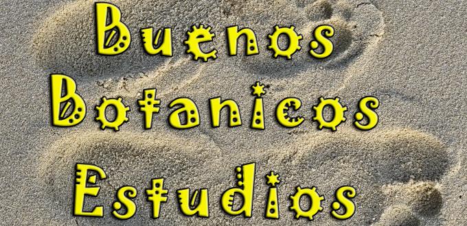 Buenos Botanicos Estudios